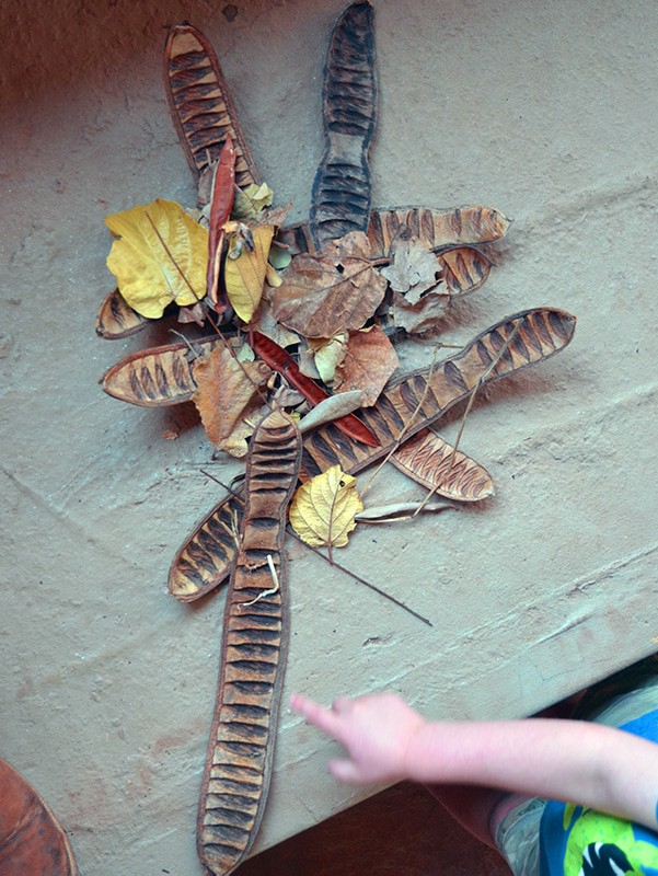 Fall toddler activity - tree leaf