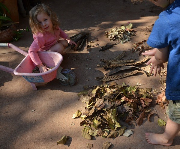 Leaf sorting Fall activity for toddlers