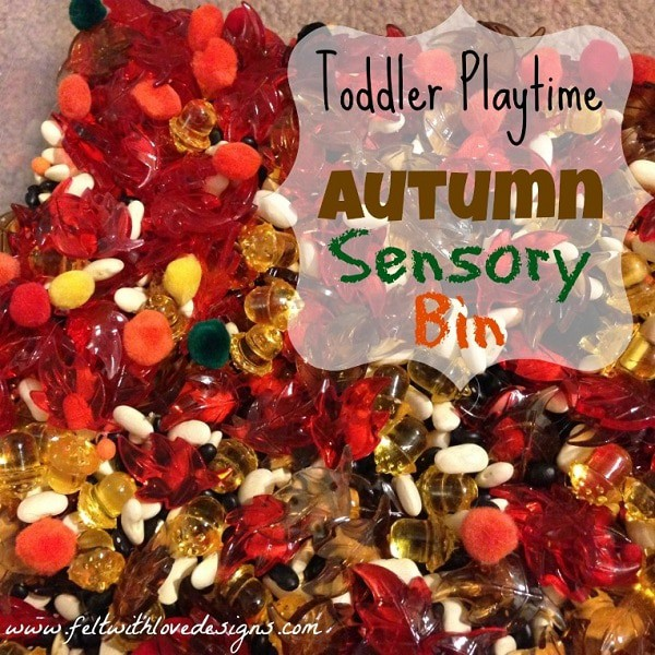 Toddler-Playtime-Autumn-Sensory-Bin-Title