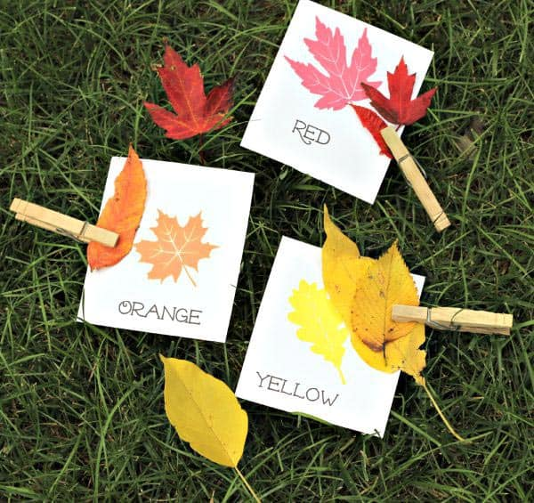 Fall activity for toddlers