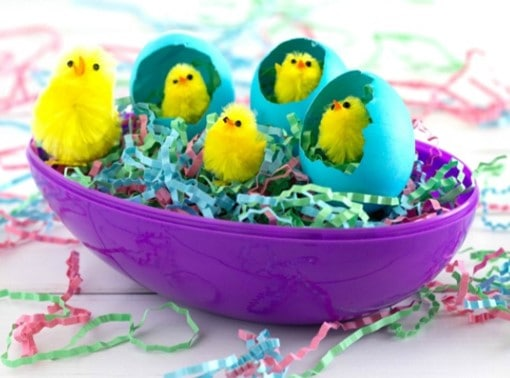 Cute Easter chick craft for preschoolers